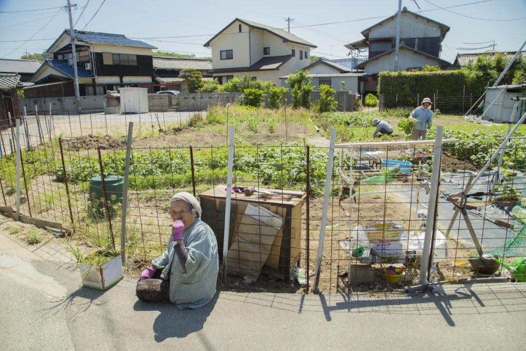 「皆んなで作ってるよ!猪に負けずによ〜」|山台 雄三さん(愛媛県西条市)